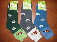 Махровые женские носки Топ-Тап. Р. 23-25 (37-40). Житомир. Снегирь., фото 1