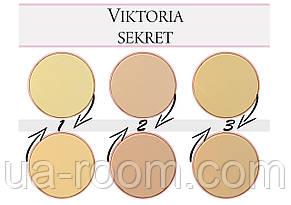 Компактная пудра VIKTORIA SEKRET  2 IN 1 BB POWDER, фото 2