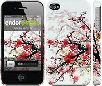 """Чехол на iPhone 4s Цветущий куст """"831c-12"""""""