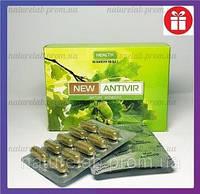 Антивір 🚩 противірусний натуральний препарат (БАД 60кап.)