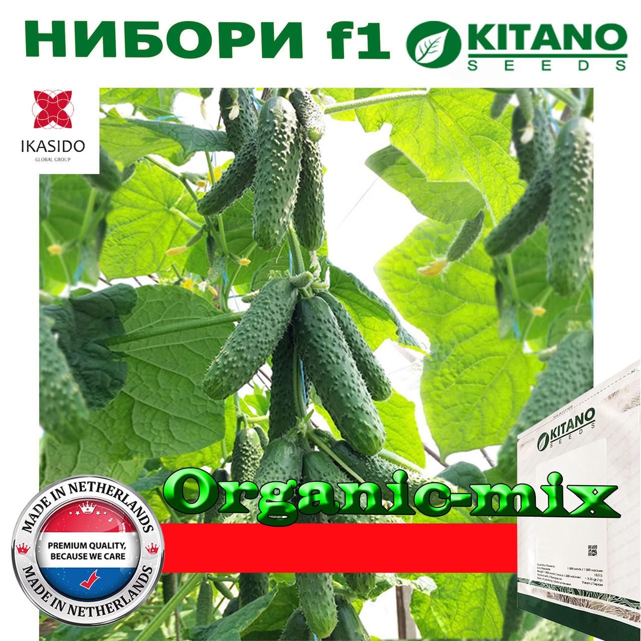 Огурец Нибори F1 KS 90, суперпучковой, 1000 семян, ТМ Kitano Seeds