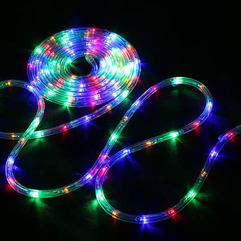 Дюралайт Уличный светодиодный Led гирлянда 10 м., мультицвет с переходником, фото 2
