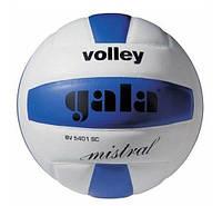М'яч волейбольний Gala Mistral BV5401