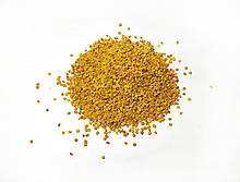 Бджолине (квітковий) пилок (обніжжя) ціна за 100 грам