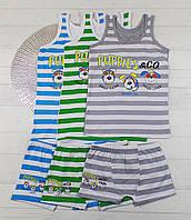 Комплект детского нижнего белья, боксерки  + майка для мальчиков 9-10 лет 655816127136