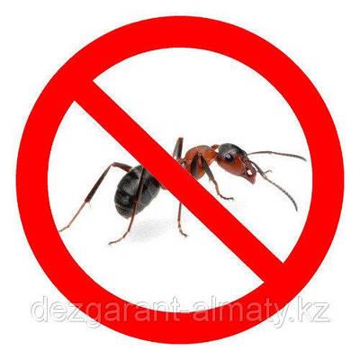 Засіб від мурах