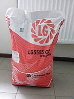 Семена подсолнечника Limagrain LG5555CLP