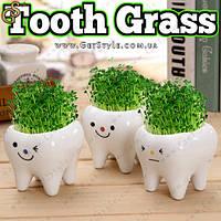 "Керамический травянчик Зубик - ""Tooth Grass"" - 3 шт."