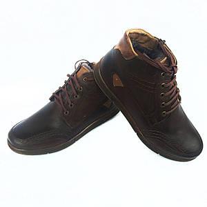 Зимние кожаные ботинки Polbut на натуральном меху
