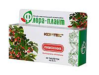 Диетическая добавка «ФЛОРА-ПЛАНТ Лимонник», 40 табл.