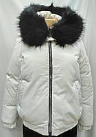 Куртка женская с капюшоном , белого цвета, сезон осень/зима., фото 1
