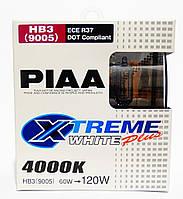 Автолампы PIAA Xtreme White Plus HB3 ☀ 4000K ✔ комплект 2шт.