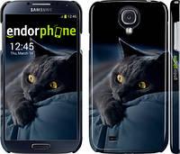 """Чехол на Samsung Galaxy S4 i9500 Дымчатый кот """"825c-13"""""""