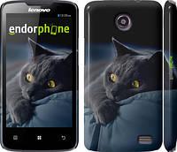 "Чехол на Lenovo A820 Дымчатый кот ""825c-68"""