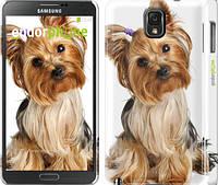 """Чехол на Samsung Galaxy Note 3 N9000 Йоркширский терьер с хвостиком """"930c-29"""""""