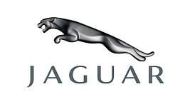 Перехідна рамка Jaguar
