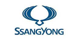 Перехідна рамка Ssang Yong