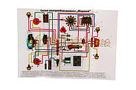 Схема электрооборудования   МУРАВЕЙ   EVO
