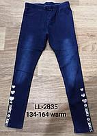 Лосины с имитацией джинсы утепленные для девочек Sincere оптом, 134-164 pp. Артикул: LL2835, фото 1
