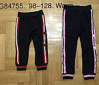 Спортивные брюки утепленные для девочек Grace оптом, 98-128 рр. Артикул: G84755, фото 1
