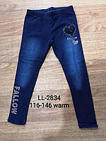 Лосины утепленные под джинс для девочек оптом, Sincere, 116-146 см,  № LL-2834, фото 1