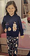 АКЦИЯ!!!!! Детская синяя турецкая пижама на девочку или на мальчика Aydogan на 4 года с рисунком ежики и мишки