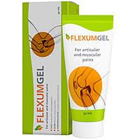 Flexumgel (Флексумгель) - средство для лечения и восстановления суставов, фото 1