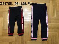 Спортивные брюки с начесом для девочек Grace 98-128 р. р., фото 1