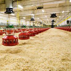 Отопление и системы микроклимата для животноводства и птицеводства