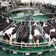 Оборудование для животноводства, общее