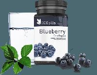 Ecopills Blueberry (Экопиллс Блюберри) таблетки для зрения, фото 1