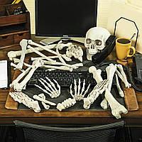 Набор костей скелета (реквизит на Хэллоуин)