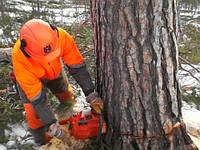 Спиливание, удаление, обрезка кронирование деревьев - Корчевка пней