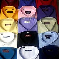 Однотонная приталенная рубашка BAZZOLO, SIGMAN, BENDU (цвета в ассортименте)