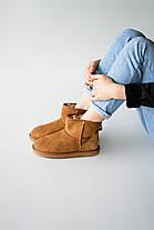 Угги женские в стиле UGG Australia Classic Mini Chestnut, фото 3