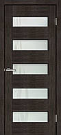Дверное полотно Форте ПО лиана, фото 1