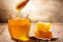 Мед та продукти бджільництва