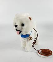 Собачка на пульте 4770 белая болонка, фото 2