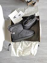Угги женские в стиле UGG Australia Mini Bailey Bow Gray, фото 3