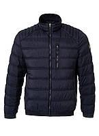 """Мужская курточка темно синего цвета линейки """"Lucky Duck"""" от Pierre Cardin"""