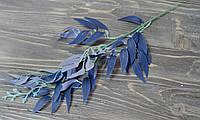Листья рускус синие, фото 1
