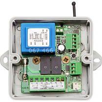 Nero Radio 8113 IP65 приемник для роллет, фото 2