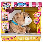 Интерактивная игрушка Щенок Ролли Люблю целоваться Little live pets My Rollie Moose, фото 2