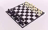 Шахматные фигуры пластиковые с полотном для игр IG-3107C (пластик, h пешки-3,3см)