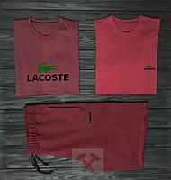 Мужской комплект две футболки + шорты Lacoste красного цвета