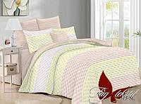 Комплект постельного белья с компаньоном SL315 ТМ TAG 2-спальный, постельное белье двухспальное