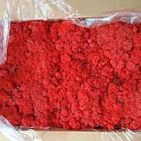 Червоний Стабілізований мох (ягель) 500 г