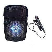 Акустическая Bluetooth колонка чемодан WF-801 + микрофон