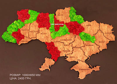 Карта Украины на стену с фанеры и мха