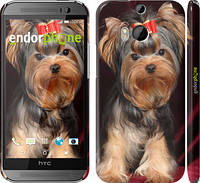 "Чехол на HTC One M8 dual sim Йоркширский терьер ""929c-55"""